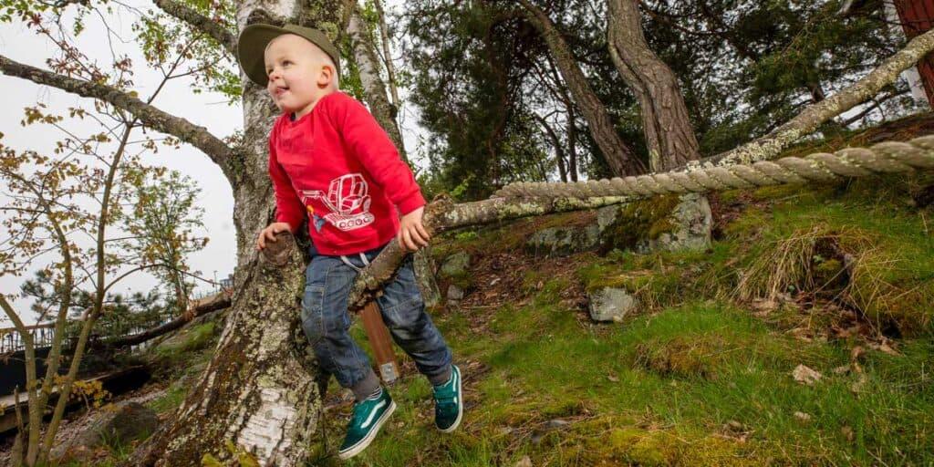 lapsi kiipeää oksalla