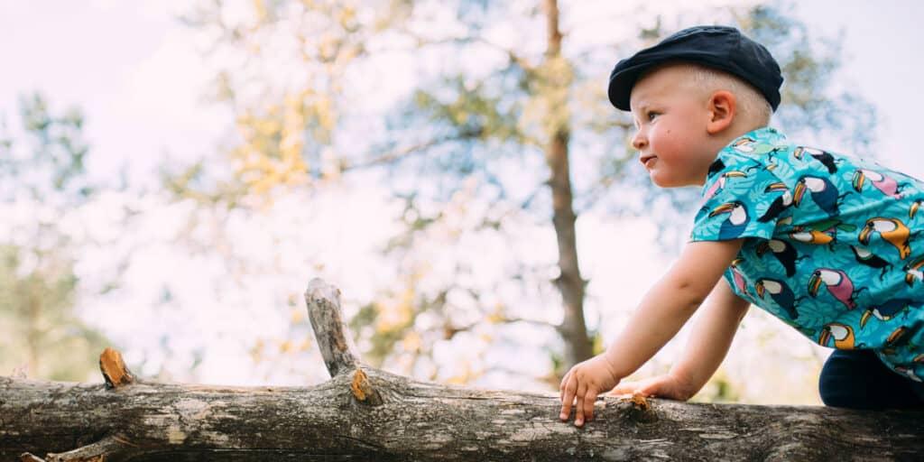 pieni lapsi kiipeilee puun oksalla